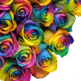 Rainbow Roses Available in Half Dozen, Dozen & Two Dozen