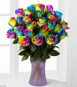 Rainbow Roses Wow Rainbow Roses!