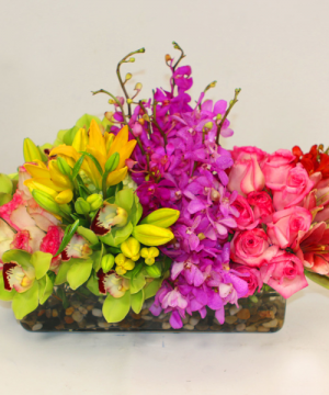 Rainbow Tropical Modern in Wilton Manors, FL | LA FLEUR FLORALS & EVENTS