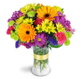 Rainbow Vase Arrangement