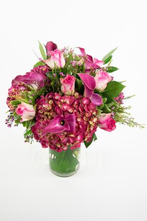 Raspberry  in Falls Church, VA   Geno's Flowers