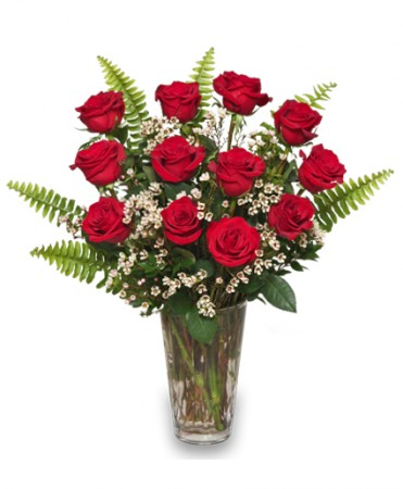 Ravishing Dozen Rose Arrangement