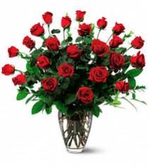 Ravishing Red 2 Dozen Red Roses