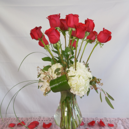 Ravishing Red Contemporary Dozen  Valentines