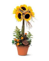 RAY OF SUNFLOWER DELIGHT TOPIARY