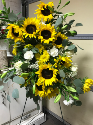 Rays of summer sunshine Spray Spray in Wilkes Barre, PA   Kelly Ann's Floral