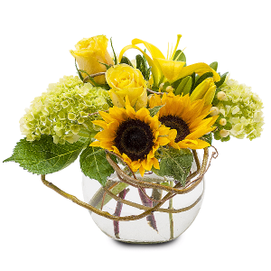 Rays of Sunshine Arrangement in Swannanoa, NC | SWANNANOA FLOWER SHOP