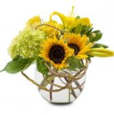 Rays of sunshine  Vase