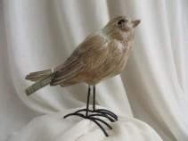 Raz Bird Gift Item Raz Bird w/metal Legs
