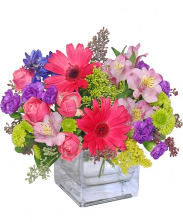 Razzle dazzle bouquet of flowers in colorado springs co bella razzle dazzle bouquet of flowers mightylinksfo