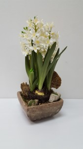 Realistic  Narcissus Plant Silk