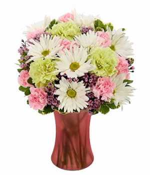 Recovery Blessings Arrangement in Winston Salem, NC | RAE'S NORTH POINT FLORIST INC.