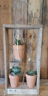 Recycled Wood Succulent Tower plants