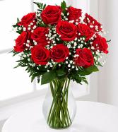 Red 1 Dozen Long Stem Roses by FTD
