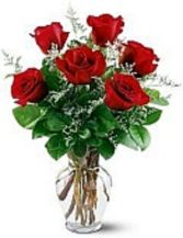 Red 1/2 Dozen Rose arrangement