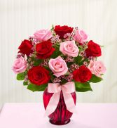 Red and Pink Roses 1 dz