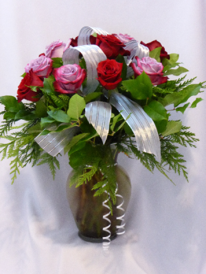 RED AND VIOLET - GIVE MOM LOVE WITH PREMIUM ROSES THE BEST PREMIUM ROSES FOR MOTHER'S DAY. Add Gifts of Teddy Bears or Chocolates. in Prince George, BC | AMAPOLA BLOSSOMS FLOWERS