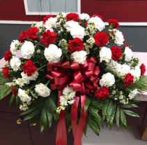 RED AND WHITE CARNATION CASKET SPRAY Casket Spray