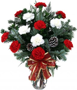 Red and White Carnation Vase Christmas