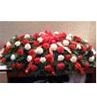 Red and White Carnations Casket Spray