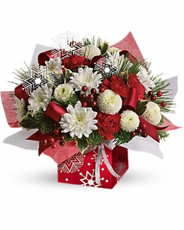 Red and White Christmas Present