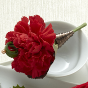 Red Carnation Boutonniere Boutonniere