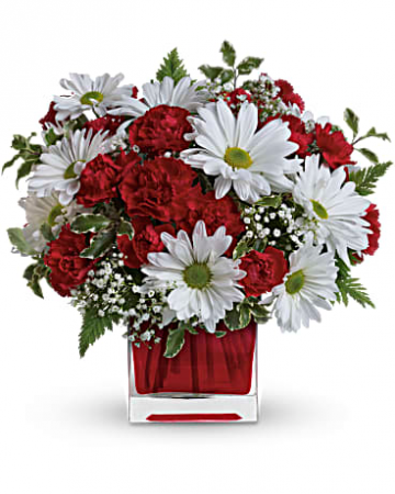 Carnation & Daisy Cube