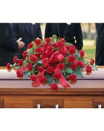 Red Carnation Spray Sympathy