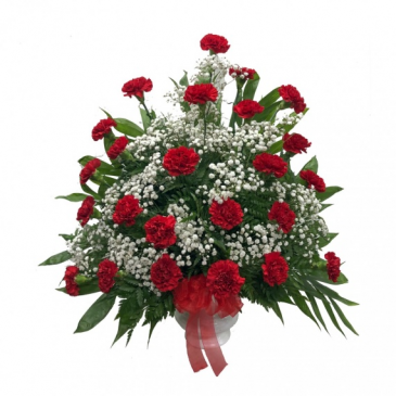 Red Carnation urn