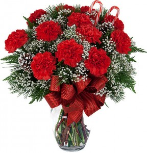 Red Carnations Arranged in Vase