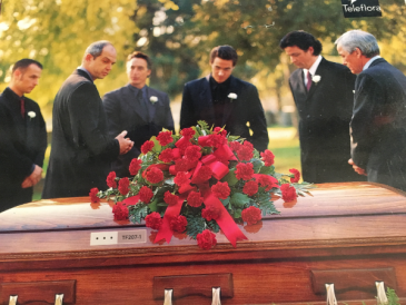 Red Carnations Casket cover