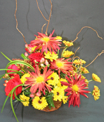 RED CHRYSANTHEMUM SPECIAL medium