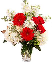 Red Frost Floral Arrangement