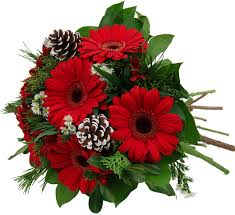 Red Gerber Delight Cut Flower Bouquet Wrapped in Celo and A Bow