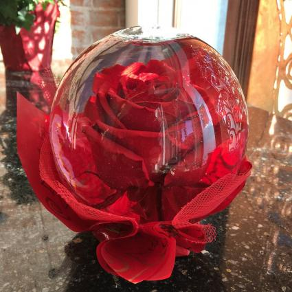 The  Rose Globe Lasts 3+ Plus Months