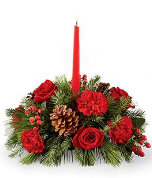 Red & Green Christmas Centerpiece  in Spotsylvania, VA | Walker's Flowers & More