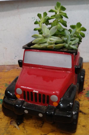 Father's Day Red JEEP with Succulents Red JEEP with Succulents