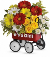 red metal wagon girl new baby
