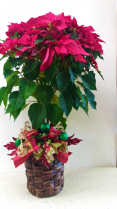 Red Poinsettia Christmas Topiary Christmas