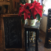 Red Poinsettia Planter