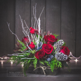 Red Robin Christmas Flowers