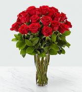 Red Rose Arranged