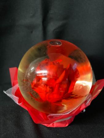 Red Rose In A Round Globe