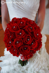 RED ROSE SPARKLE