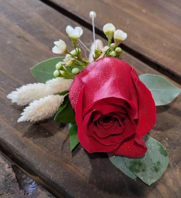 Red Rose Splendor