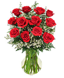 Red Roses and Wispy Whites Classic Dozen Roses
