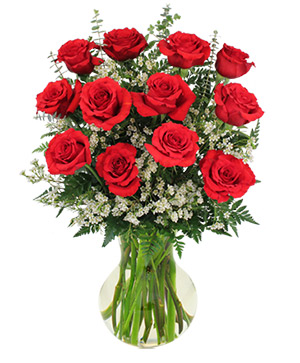 Red Roses and Wispy Whites Classic Dozen Roses in Killarney, MB | COMMUNITY FLORIST JEWELLERY & GIFT