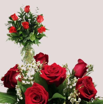 Red Roses- BudVase  or 1/2 Dozen