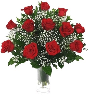 RED ROSES CLASSIC ARRANGEMENT