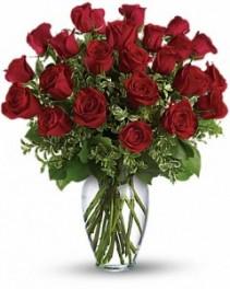 Be My Valentine Roses  24 Long Stem Roses in Vase